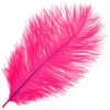 "Ostrich Drab Feathers 6-8"" Premium Quality Hot Pink"